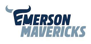 emerson-high-school